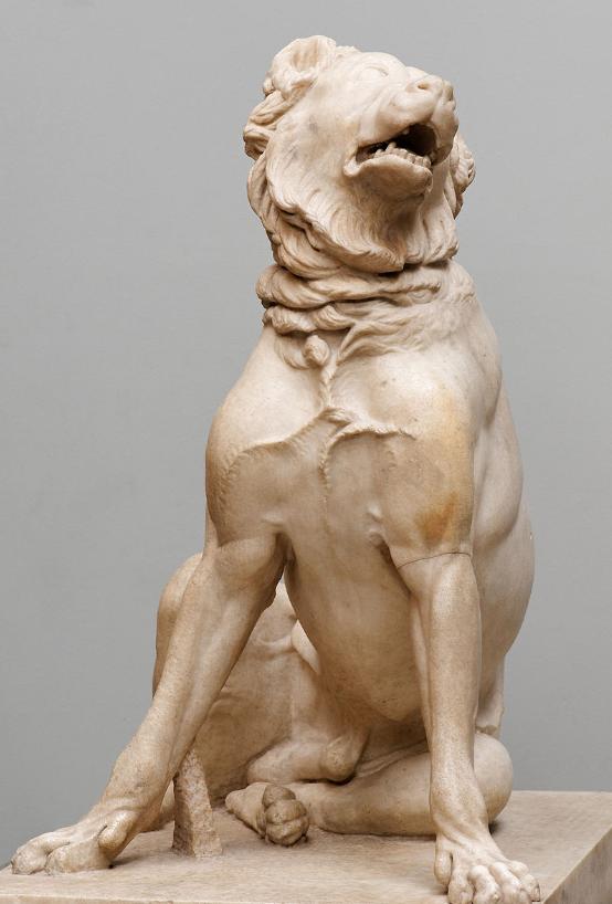 Peritas - dog
